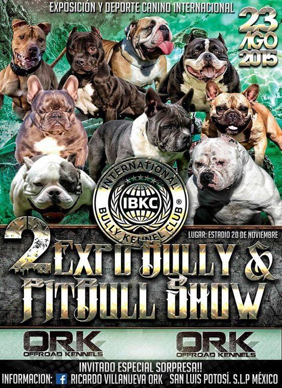 2 Expo Bully y Pitbull Show San Luis Potosí