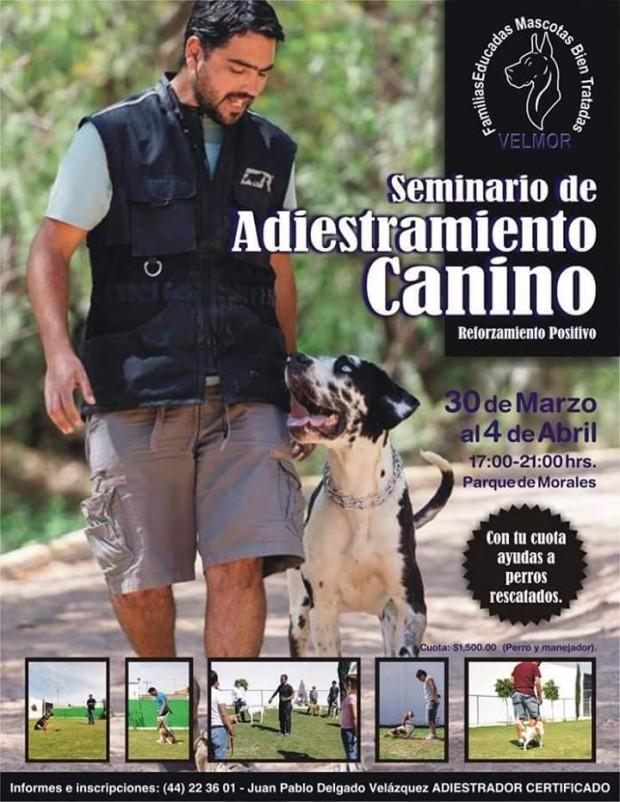 Seminario de Adiestramiento Canino @ Parque Morales | San Luis Potosí | San Luis Potosí | México